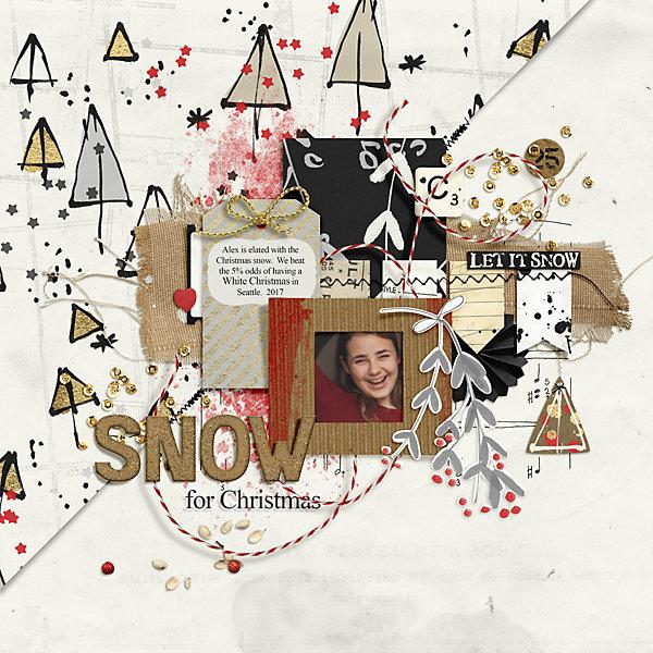2017 Snow for Christmas Alex