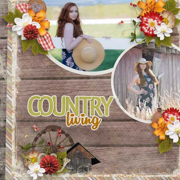 Little Bit Country  by Aimee Harrison