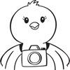 photo_chick
