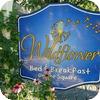 WildflowerShelley