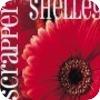scrappershelley