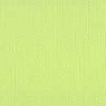 Bazzill Basics - 12 x 12 Mono Adhesive Cardstock - Limeade
