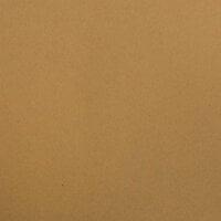 Bazzill Basics - 12 x 12 Classic Cardstock - Dark Kraft