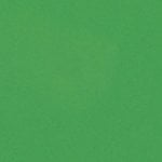 Bazzill Basics - 12 x 12 Cardstock - Smooth Texture - Green Apple