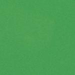 Bazzill Basics - 12 x 12 Cardstock - Smooth Texture - Green Apple