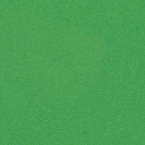 Bazzil Basics - 8.5 x 11 - Green Apple