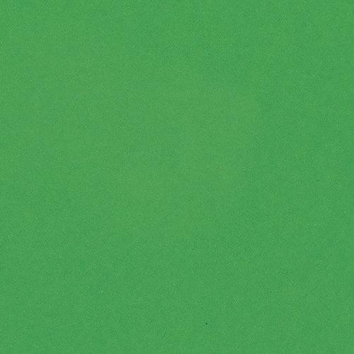 Bazzill Basics - 8.5 x 11 Cardstock - Smooth Texture - Green Apple