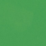 Bazzill Basics - 8.5 x 11 Cardstock - Smooth Texture - Green Apple