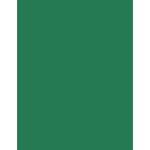 Bazzill Basics - 8.5 x 11 Cardstock - Card Shoppe - Evergreen