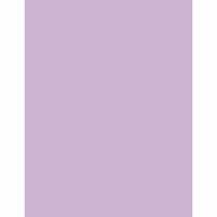Bazzill Basics - 8.5 x 11 Cardstock - Smoothies - Lilac Swirl