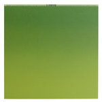 Bazzill Basics - 12 x 12 Ombre Cardstock - Easter Grass