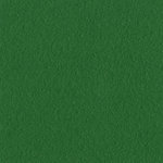 Bazzill Basics - 12 x 12 Mono Adhesive Cardstock - Bazzill Green