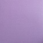 Bazzill Basics - 12 x 12 Bling Cardstock - Amulet