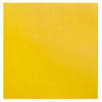 Bazzill Basics - 12 x 12 Plastic Embossing Paper - Buttercup