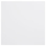 Bazzill Basics - 12 x 12 Plastic Embossing Paper - Snowball