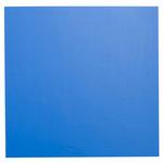 Bazzill Basics - 12 x 12 Plastic Embossing Paper - Ultramarine