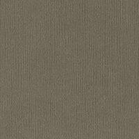 Bazzill Basics - 12 x 12 Cardstock - Fourz - Zinc