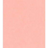 Bazzill Basics - 12 x 12 Cardstock - Cotton Candy