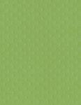 Bazzill Basics - 8.5 x 11 Cardstock - Dotted Swiss - Apple Tart