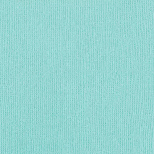 Bazzill Basics - 12 x 12 Cardstock - Canvas Texture - Mono - Aruba