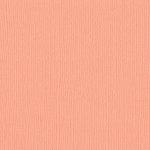 Bazzill Basics - 12 x 12 Cardstock - Mono - Coral Cream