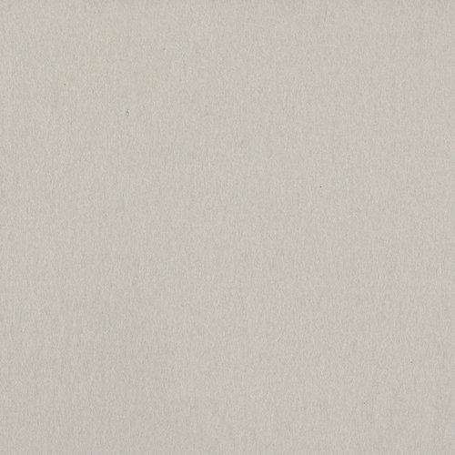 Bazzill Basics - 12 x 12 Heavyweight Cardstock - Card Shoppe - Alpaca