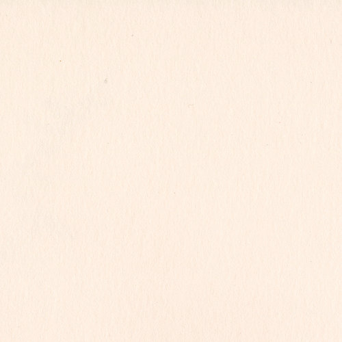 Bazzill Basics - 12 x 12 Heavyweight Cardstock - Card Shoppe - Pale Rose