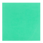Bazzill Basics - 12 x 12 Self Adhesive Foam Sheets - Teal