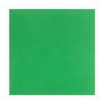 Bazzill Basics - 12 x 12 Self Adhesive Foam Sheets - Green