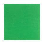 Bazzill Basics - 12 x 12 Self Adhesive Foam Sheets - Green