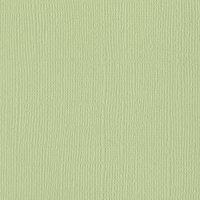 Bazzill Basics - 12 x 12 Cardstock - Mono - Aloe Vera