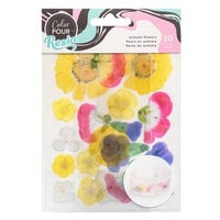 American Crafts - Color Pour Resin Collection - Mix-In Acetate Flowers
