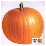 American Crafts - 12 x 12 Die Cut Paper - Pumpkin