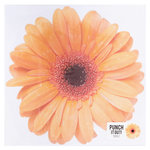 American Crafts - 12 x 12 Die Cut Paper - Gerber Daisy