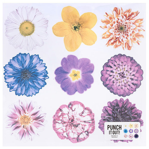American Crafts - 12 x 12 Die Cut Paper - Multi Flowers