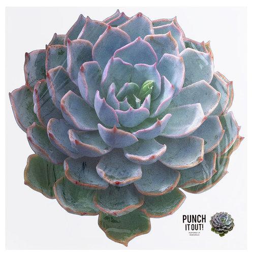 American Crafts - 12 x 12 Die Cut Paper - Succulent