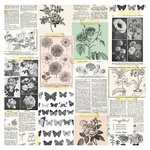Crate Paper - Flourish Collection - 12 x 12 Acetate Paper - Floribuna