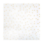 Crate Paper - Chasing Dreams Collection - 12 x 12 Acetate Paper with Glitter Accents - Magical