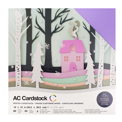 American Crafts - 12 x 12 Cardstock Pack - 60 Sheets - Winter