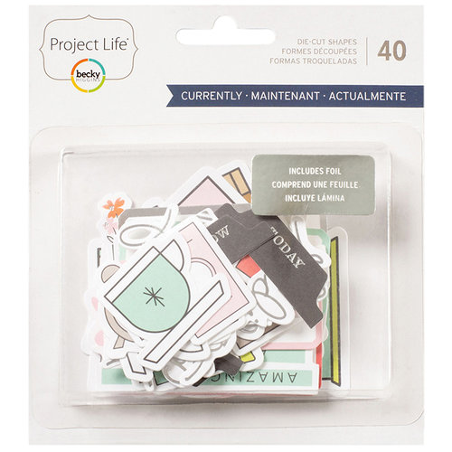 Becky Higgins - Project Life - Currently Edition Collection - Ephemera with Foil Accents