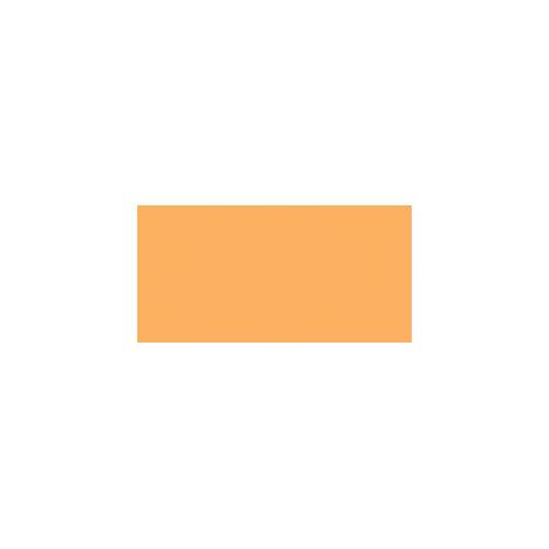 American Crafts - Chromatix - Blending Marker - Apricot 2