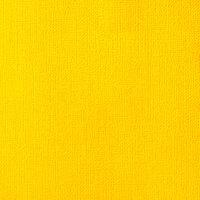 American Crafts - 12 x 12 Cardstock - Weave - Lemon