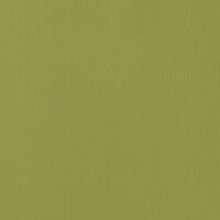 American Crafts - 12 x 12 Cardstock - Weave - Olive