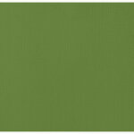 American Crafts - 12 x 12 Cardstock - Weave - Spinach