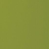American Crafts - 12 x 12 Cardstock - Weave - Leaf