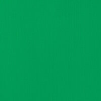 American Crafts - 12 x 12 Cardstock - Weave - Emerald