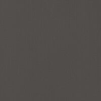 American Crafts - 12 x 12 Cardstock - Weave - Black