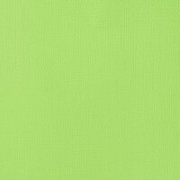 American Crafts - 12 x 12 Cardstock - Weave - Peapod