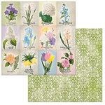 BoBunny - Cottontail Collection - 12 x 12 Double Sided Paper - Springtime