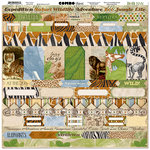 BoBunny - Jungle Life Collection - 12 x 12 Cardstock Stickers - Combo